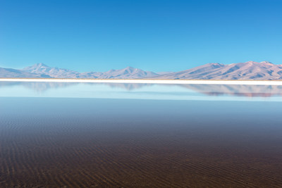 Salar de Maricunga, Chile